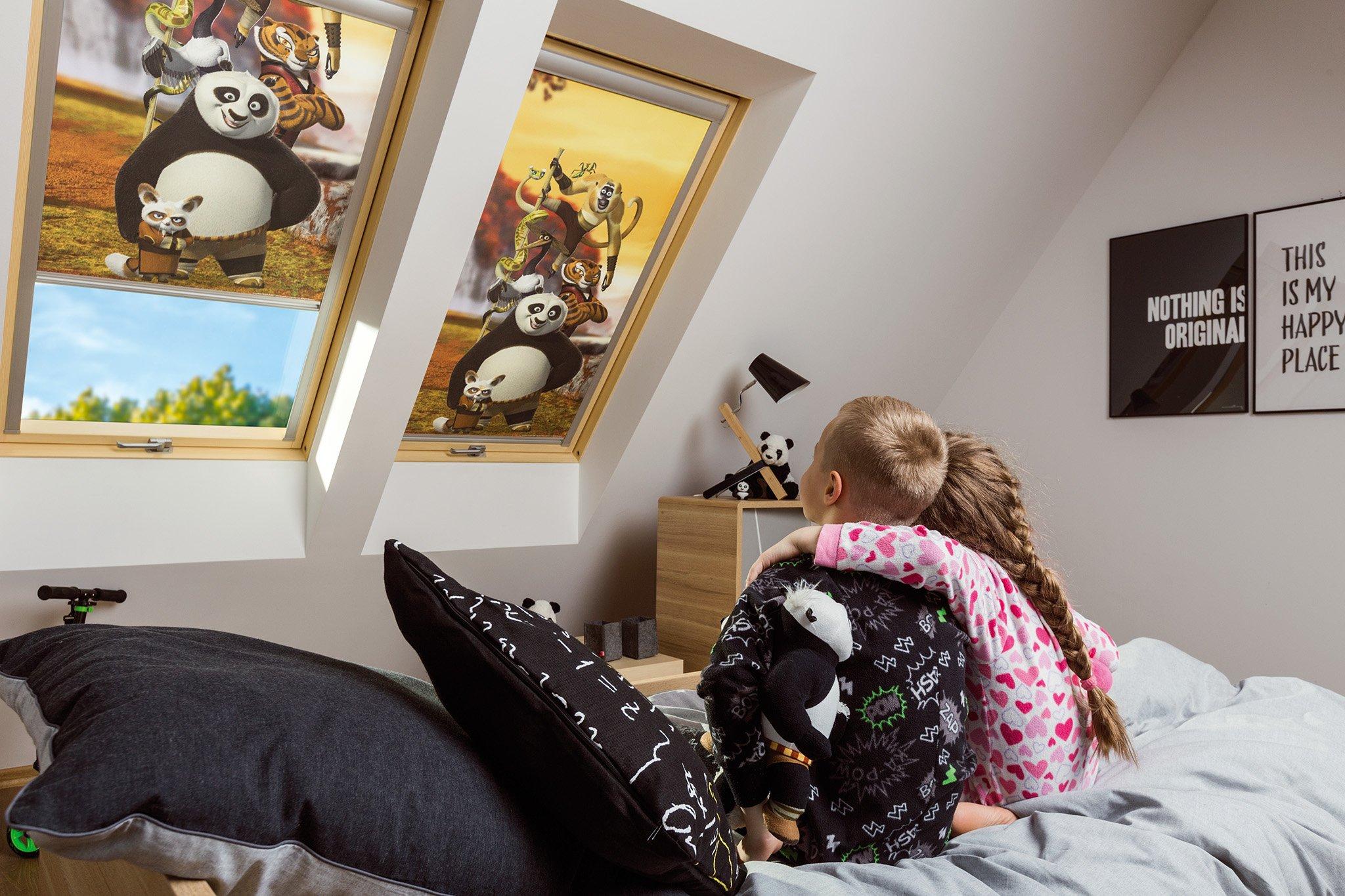 Rulouri opace FAKRO ARF Colectia DreamWorks